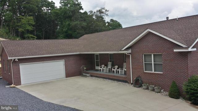 511 Panorama View Drive, STANLEY, VA 22851 (#VAPA104524) :: Browning Homes Group