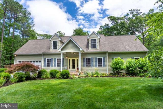 23203 Stewart Way, MCDANIEL, MD 21647 (#MDTA135594) :: RE/MAX Coast and Country