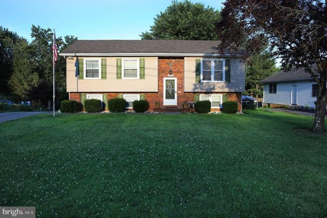 506 Fox Drive, WINCHESTER, VA 22601 (#VAWI112702) :: Browning Homes Group