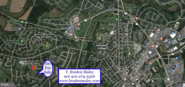 41 Wttr Lane, WESTMINSTER, MD 21158 (#MDCR189456) :: The Gus Anthony Team