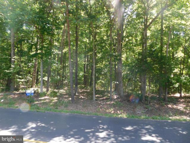 Forest Grove Rd, AMISSVILLE, VA 20106 (#VARP106720) :: Pearson Smith Realty
