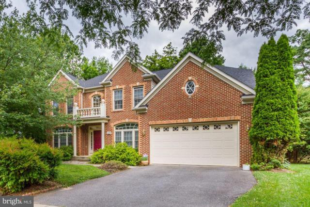 1019 Curtis Place, ROCKVILLE, MD 20852 (#MDMC664938) :: The Redux Group