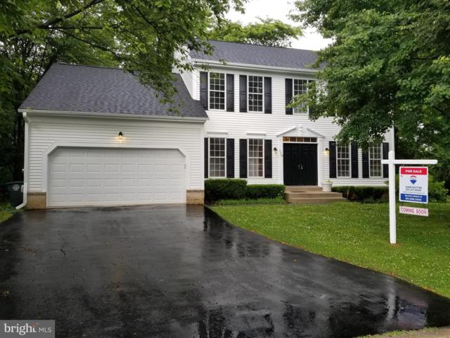 110 Pipe Meadow Way, FREDERICK, MD 21702 (#MDFR248498) :: The Sebeck Team of RE/MAX Preferred