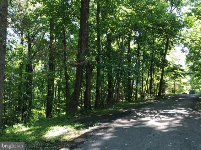 Greystone Drive, FRONT ROYAL, VA 22630 (#VAWR137196) :: Arlington Realty, Inc.