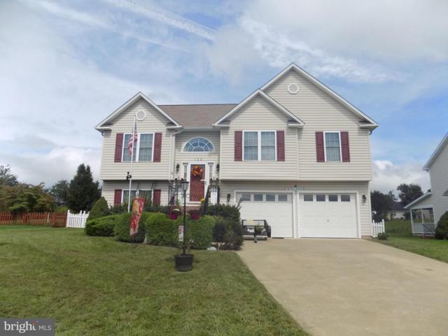 125 Mcclure Way, WINCHESTER, VA 22602 (#VAFV151358) :: Browning Homes Group