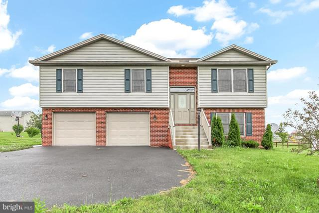 1216 Clearfield Road, SHIPPENSBURG, PA 17257 (#PAFL166416) :: Bob Lucido Team of Keller Williams Integrity