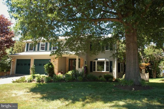 13904 Poplar Tree Road, CHANTILLY, VA 20151 (#VAFX1070906) :: Labrador Real Estate Team