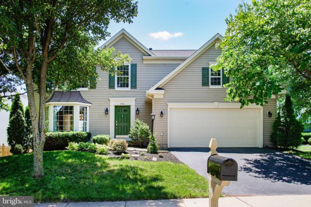 43401 Sperrin Court, ASHBURN, VA 20147 (#VALO387346) :: Network Realty Group