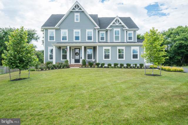24383 Virginia Gold Lane, ALDIE, VA 20105 (#VALO387350) :: The Piano Home Group