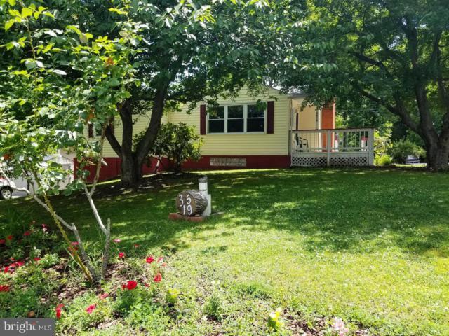 3519 Oak Drive, EDGEWATER, MD 21037 (#MDAA403888) :: City Smart Living