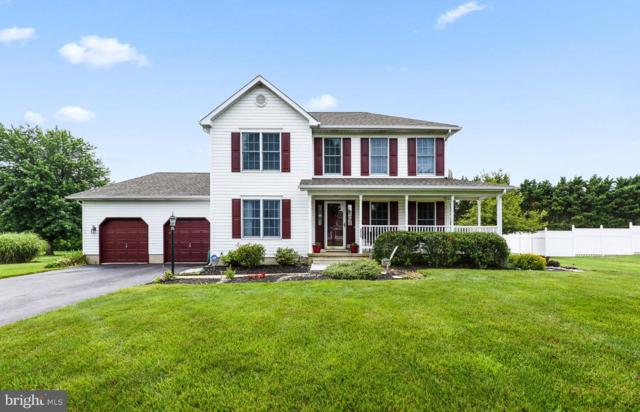 229 Jeffrey Drive, MIDDLETOWN, DE 19709 (#DENC480824) :: McKee Kubasko Group