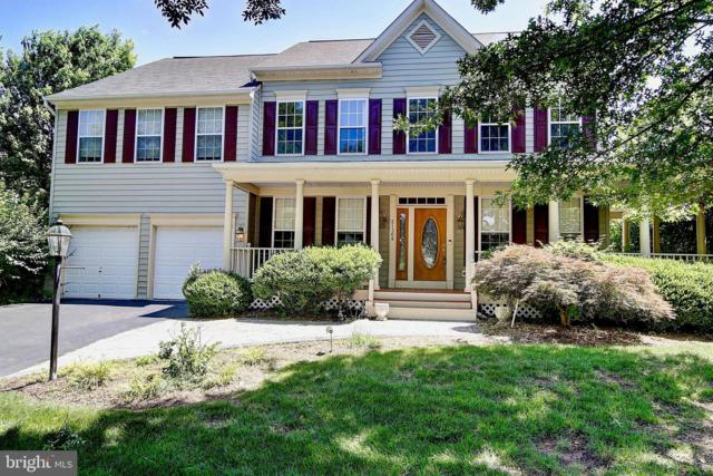 21368 Sturman Place, BROADLANDS, VA 20148 (#VALO387362) :: The Greg Wells Team