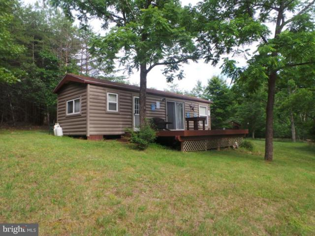 973 Posey Hollow, BERKELEY SPRINGS, WV 25411 (#WVMO115518) :: Hill Crest Realty