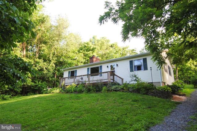 229 Shenandoah Trail, WINCHESTER, VA 22602 (#VAFV151378) :: Browning Homes Group