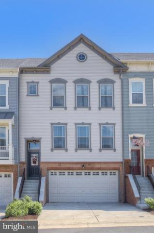 503 Devilwood Way, STAFFORD, VA 22554 (#VAST212174) :: The Maryland Group of Long & Foster Real Estate