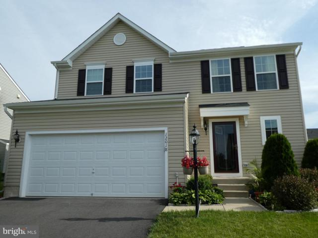 12018 Live Oak Drive, CULPEPER, VA 22701 (#VACU138726) :: Network Realty Group