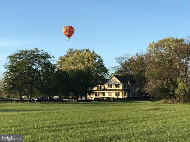 140 Triple Oak Lane, BERRYVILLE, VA 22611 (#VACL110520) :: Great Falls Great Homes