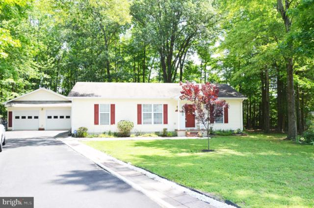 15598 Delaware Drive, KING GEORGE, VA 22485 (#VAKG117728) :: The Daniel Register Group