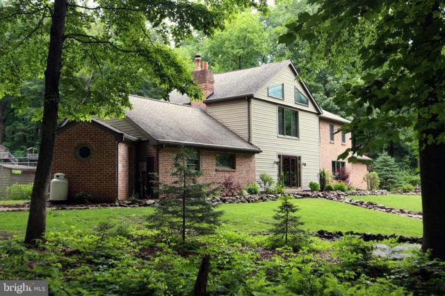 1372 Roush Lane, LEBANON, PA 17042 (#PALN107534) :: Liz Hamberger Real Estate Team of KW Keystone Realty
