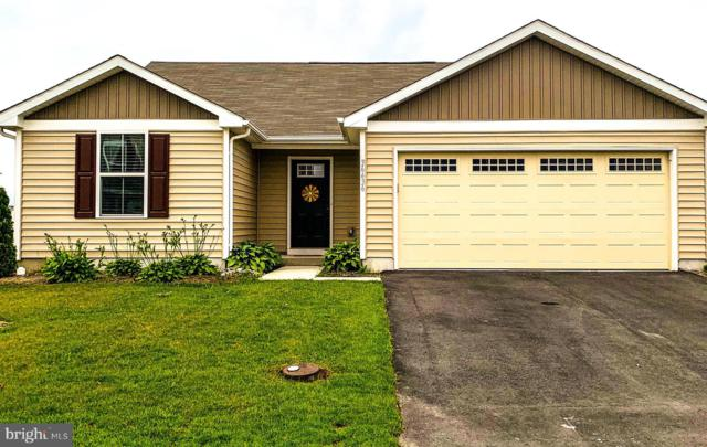 36436 Carriage Walk Lane, DELMAR, DE 19940 (#DESU142516) :: Atlantic Shores Realty