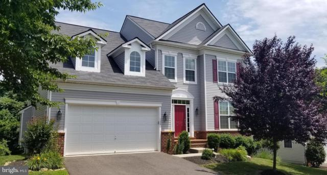128 Standpipe Road, CULPEPER, VA 22701 (#VACU138734) :: Network Realty Group