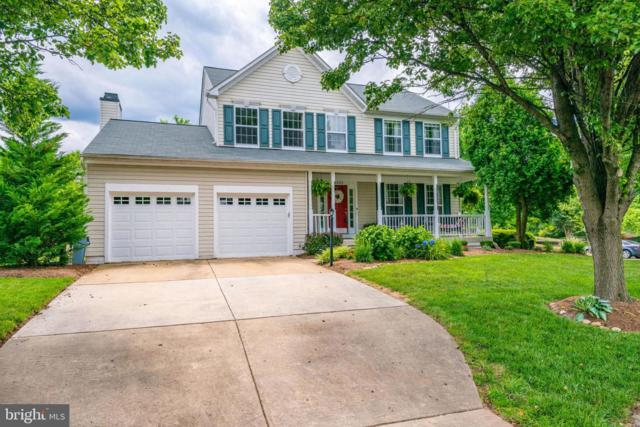 46605 Hampshire Station Drive, STERLING, VA 20165 (#VALO387522) :: The Vashist Group
