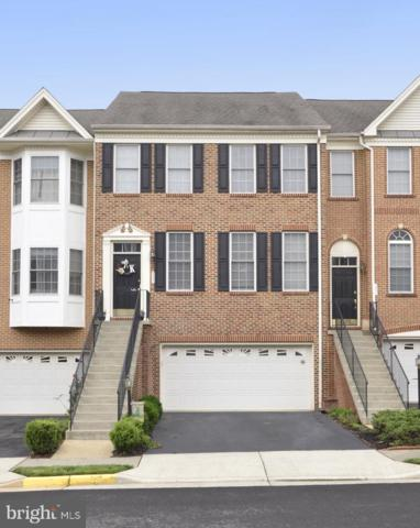 205 Grassy Ridge Terrace, PURCELLVILLE, VA 20132 (#VALO387534) :: Tessier Real Estate