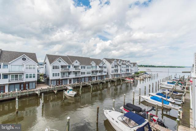293-D Girard Street #48, HAVRE DE GRACE, MD 21078 (#MDHR234866) :: The Dailey Group