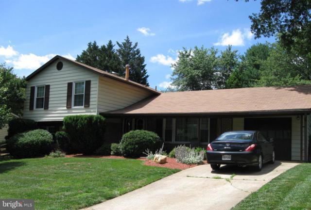 1812 Hopefield Road, SILVER SPRING, MD 20905 (#MDMC665298) :: Dart Homes
