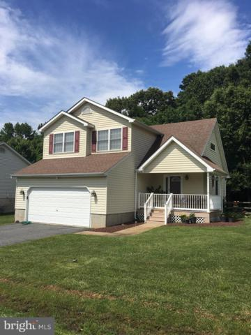 202 Highland Drive, ELKTON, MD 21921 (#MDCC164758) :: Network Realty Group