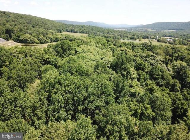 13141 Sagle Road (Lot #2), PURCELLVILLE, VA 20132 (#VALO387594) :: The Greg Wells Team