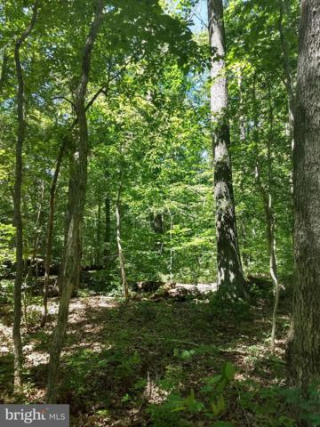 Lot 10 Cooke Place, MINERAL, VA 23117 (#VALA119412) :: Arlington Realty, Inc.