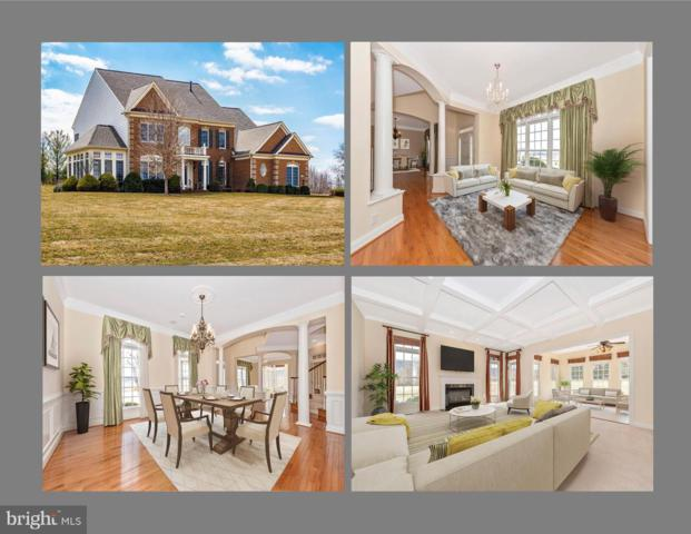 4201 Maryland Court, MIDDLETOWN, MD 21769 (#MDFR248650) :: The MD Home Team