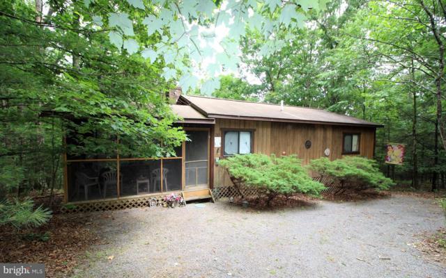 378 Snyder's Ridge Road, MATHIAS, WV 26812 (#WVHD105234) :: Hill Crest Realty