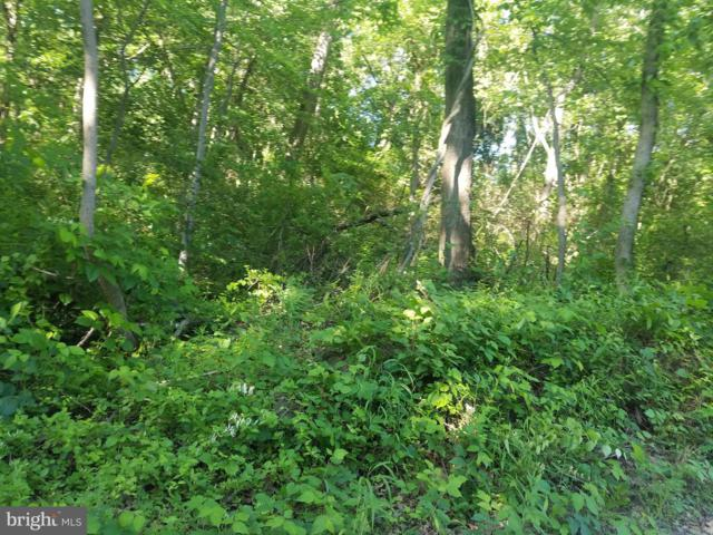 Lot # 1 Pleasant Grove Road, YORK HAVEN, PA 17370 (#PAYK119284) :: LoCoMusings