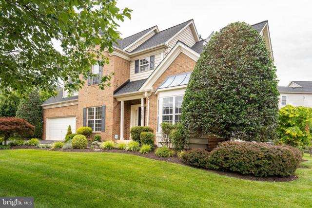 13509 Shearwater Place, GERMANTOWN, MD 20874 (#MDMC665462) :: Dart Homes
