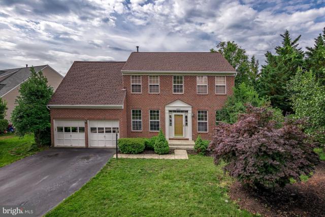 46921 Seneca Ridge Drive, STERLING, VA 20164 (#VALO387666) :: Great Falls Great Homes