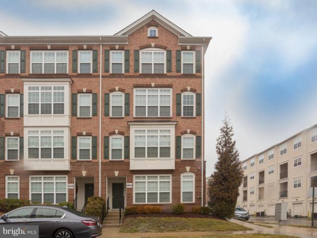 42604 Cardinal Trace Terrace, BRAMBLETON, VA 20148 (#VALO387678) :: Great Falls Great Homes