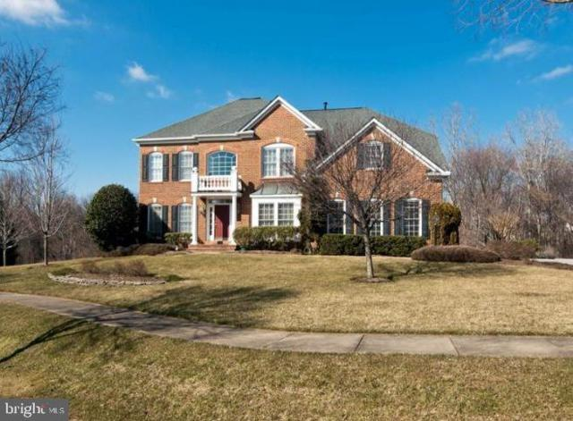 705 Indian Wells Court, SILVER SPRING, MD 20905 (#MDMC665536) :: Bruce & Tanya and Associates