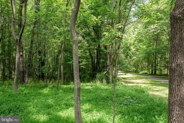 Three Oak Lane, CULPEPER, VA 22701 (#VACU138754) :: Eng Garcia Grant & Co.