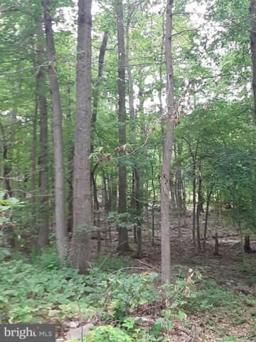 LOT 3 PANTHER Panther, WINCHESTER, VA 22602 (#VAFV151424) :: Arlington Realty, Inc.
