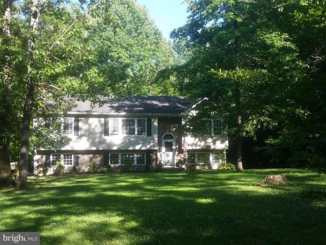 4602 Mcmillian Drive, SUMERDUCK, VA 22742 (#VAFQ160972) :: Arlington Realty, Inc.