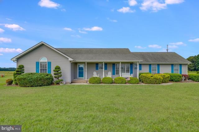 9424 Clendaniel Pond Road, LINCOLN, DE 19960 (#DESU142614) :: Blackwell Real Estate