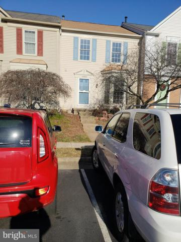 43583 Plantation Terrace, ASHBURN, VA 20147 (#VALO387708) :: Bruce & Tanya and Associates