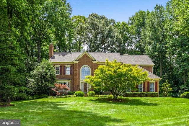 11708 Saddle Crescent Circle, OAKTON, VA 22124 (#VAFX1071718) :: Pearson Smith Realty
