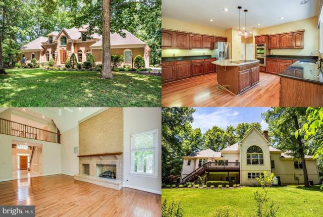 8303 Canteen Circle, FREDERICKSBURG, VA 22407 (#VASP213586) :: The Licata Group/Keller Williams Realty