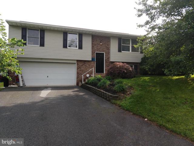 31 Hayloft Road, DENVER, PA 17517 (#PALA134994) :: Flinchbaugh & Associates