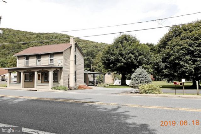 290 Tremont Road, PINE GROVE, PA 17963 (#PASK126440) :: The Joy Daniels Real Estate Group