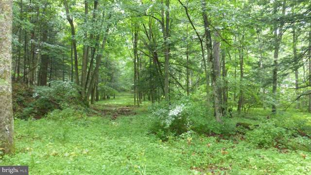 Lot 7 Middle Cove, LOST CITY, WV 26810 (#WVHD105238) :: AJ Team Realty