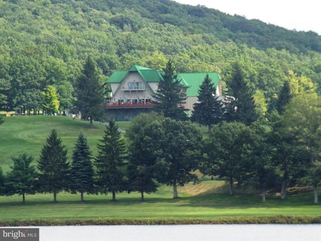 Clover, TERRA ALTA, WV 26764 (#WVPR103790) :: Great Falls Great Homes